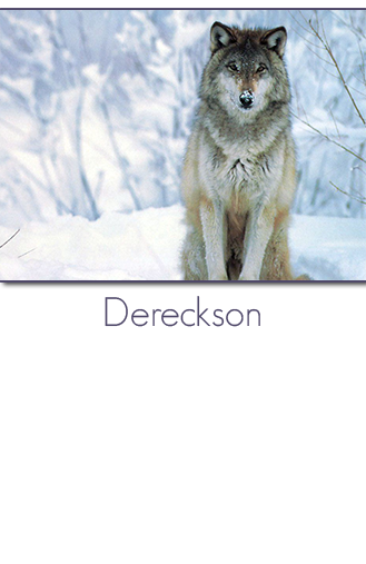 Sébastien Santoro aka Dereckson. Developer, Wikipedian, FreeBSD contributor, urban community creator, hackerspace founder, projects catalyst.
